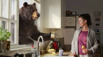 Robitussin Honey TV Spot, 'Window Bear' - Thumbnail 5