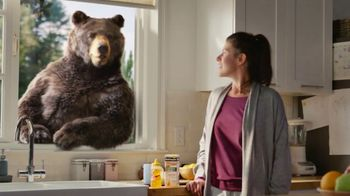 Robitussin Honey TV Spot, \'Window Bear\'