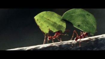 2018 GMC Terrain TV Spot, 'The Strength of an Ant'