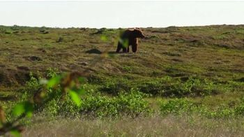 Pendleton Ammunition Company TV Spot, 'For Hunters By Hunters'