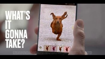 LG G7 ThinQ TV Spot, \'AI Cam for Dogs\'
