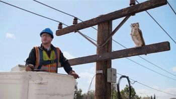 America's Best Contacts and Eyeglasses TV Spot, 'Lineman' - Thumbnail 6