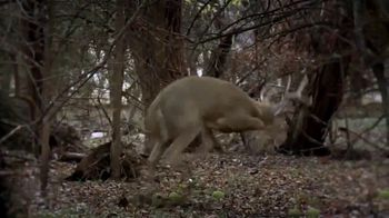 Ramcat Broadheads TV Spot, 'The Most Accurate' - Thumbnail 6