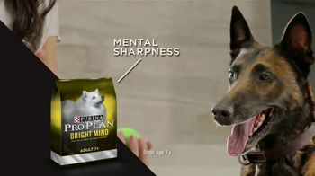 Purina Pro Plan TV Spot, 'Possibilities'
