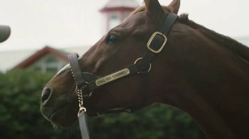 Calumet Farm TV Spot, 'Every Horse Is Unique' - Thumbnail 5