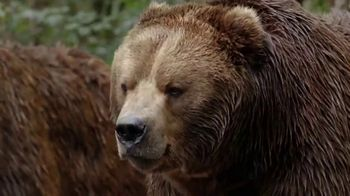Metro by T-Mobile TV Spot, 'Bears' Song by Usher - Thumbnail 5