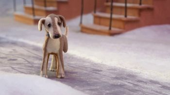 PETCO TV Spot, 'Holiday Film: Saving Up' - Thumbnail 8
