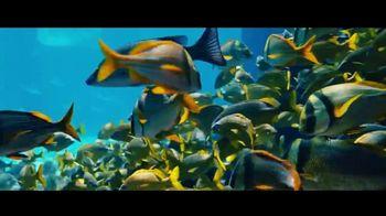 Atlantis TV Spot, 'Bursting With Life: November'