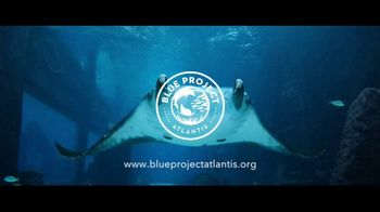 Blue Project Atlantis TV Spot, 'Every Day We Celebrate the Ocean' - Thumbnail 10