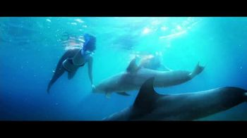 Blue Project Atlantis TV Spot, 'Every Day We Celebrate the Ocean' - Thumbnail 2