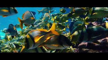 Blue Project Atlantis TV Spot, 'Every Day We Celebrate the Ocean' - Thumbnail 5