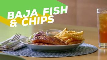 Lamb Weston TV Spot, 'Fry-Friendly Entrees'