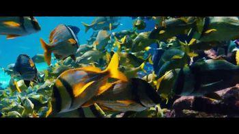 Atlantis TV Spot, 'Together We Dive In' - Thumbnail 5