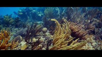 Atlantis TV Spot, 'Together We Dive In' - Thumbnail 6