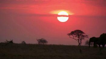 World Wildlife Fund TV Spot, 'Stop Wildlife Crime' - Thumbnail 1