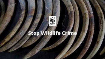 World Wildlife Fund TV Spot, 'Stop Wildlife Crime' - Thumbnail 10