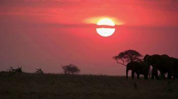 World Wildlife Fund TV Spot, 'Stop Wildlife Crime' - Thumbnail 2