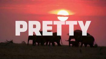 World Wildlife Fund TV Spot, 'Stop Wildlife Crime' - Thumbnail 5