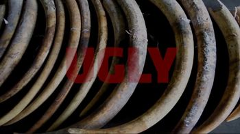 World Wildlife Fund TV Spot, 'Stop Wildlife Crime' - Thumbnail 8