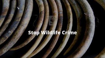 World Wildlife Fund TV Spot, 'Stop Wildlife Crime' - Thumbnail 9