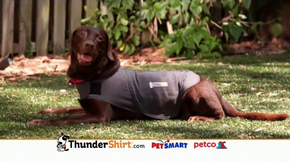ThunderShirt TV Commercial, 'Dog Anxiety'