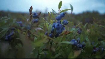Garden of Life TV Spot, 'Empowering Extraordinary Health' - Thumbnail 7