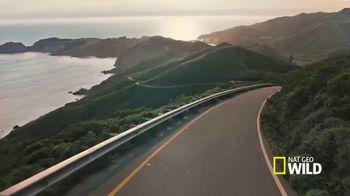 Subaru TV Spot, 'Nat Geo WILD: On the Road' [T1] - Thumbnail 4