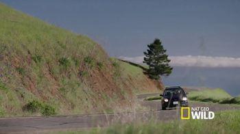 Subaru TV Spot, 'Nat Geo WILD: On the Road' [T1] - Thumbnail 9