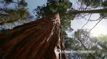 Arbor Day Foundation TV Spot, 'How You Can Help'
