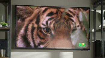 GEICO TV Spot, 'Cats Like Watching Animal Planet' - Thumbnail 10