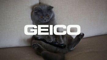 GEICO TV Spot, 'Cats Like Watching Animal Planet' - Thumbnail 9