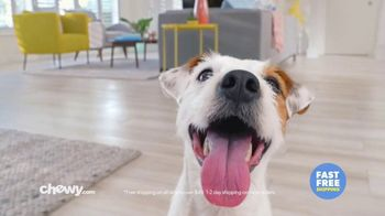 Chewy.com TV Spot, 'Toby: Free Shipping' - Thumbnail 1