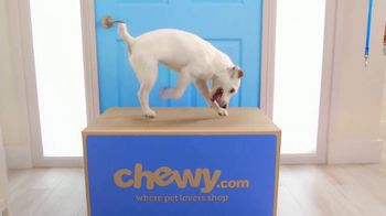 Chewy.com TV Spot, 'Toby: Free Shipping' - Thumbnail 2