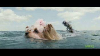 The Meg - Alternate Trailer 18