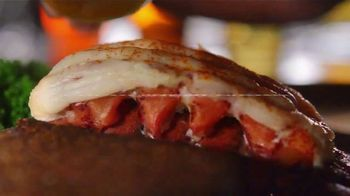 Outback Steakhouse Steak & Lobster TV Spot, 'Popular Demand: Lunch Combos' - Thumbnail 5
