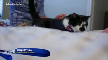 Clear the Shelters TV Spot, 'It's Back' - Thumbnail 3