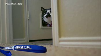 Clear the Shelters TV Spot, 'It's Back' - Thumbnail 5