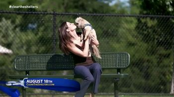 Clear the Shelters TV Spot, 'It's Back' - Thumbnail 8