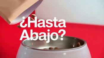 Target Drive Up TV Spot, 'Hasta tu auto' canción de Sofia Reyes [Spanish] - Thumbnail 4