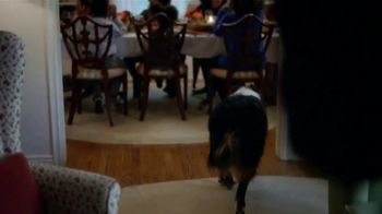 Meijer TV Spot, 'Thanksgiving Frozen Turkey' - Thumbnail 4