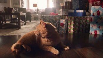 Walmart TV Spot, 'Sonrisas que alegran la Navidad' canción de Elvis Crespo [Spanish] - Thumbnail 4