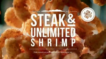 Outback Steakhouse Steak and Unlimited Shrimp TV Spot, 'More Shrimp' - Thumbnail 8