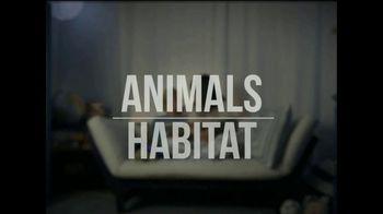 San Diego Zoo Global Wildlife Conservancy TV Spot, 'Where Did the Animals Go?' - Thumbnail 8