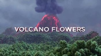 The Bouqs Company TV Spot, \' Mother\'s Day: Volcano Flowers\'