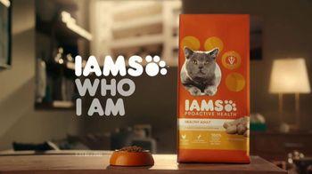 Iams Proactive Health TV Spot, 'A Real Climber' - Thumbnail 10