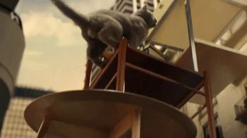 Iams Proactive Health TV Spot, 'A Real Climber'