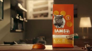 Iams Proactive Health TV Spot, 'A Real Climber' - Thumbnail 9