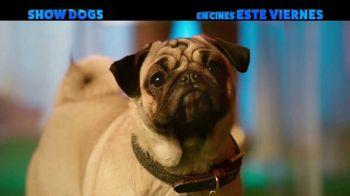 Show Dogs - Alternate Trailer 18