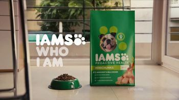 Iams TV Spot, 'Teddy' - Thumbnail 9