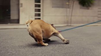 Iams TV Spot, 'Teddy' - Thumbnail 3